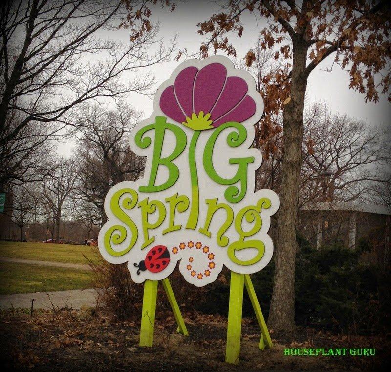 Spring Fling in Cleveland