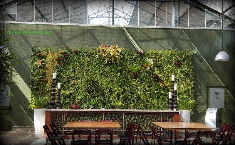 Living wall at Planterra Greenhouse