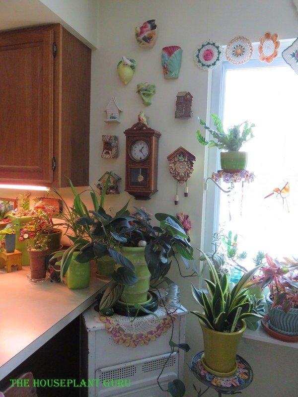 Window in eat in kitchen area